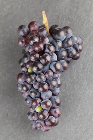 slate board: Blue grape cluster on slate board. Shallow dof Stock Photo
