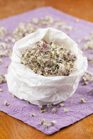 Paper bag with dry daisy flowers for herbal tea Stock Photo