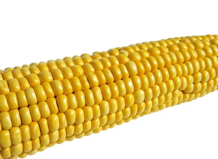 Ripe corn on a white background, close-up Stock Photo - 6589819