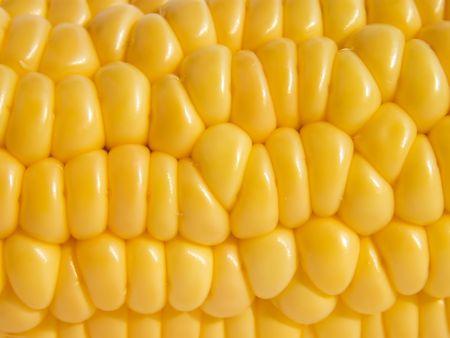 Cob of ripe corn as background close-up Stock Photo - 6589817