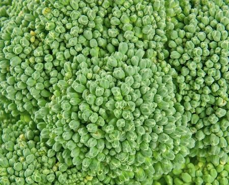 Fresh broccoli as background close-up