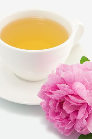 Herbal tea in white cup with pink rose close-up