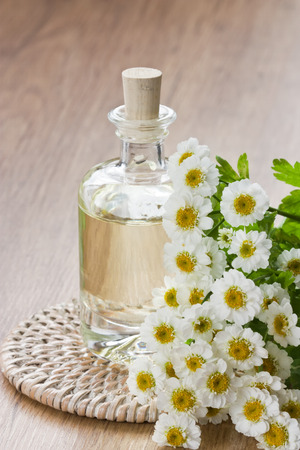 Essential aroma oil with chamomile flower for aromatherapy, spa, massage on wooden background