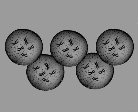 microbes: Olympians black and white microbes Stock Photo