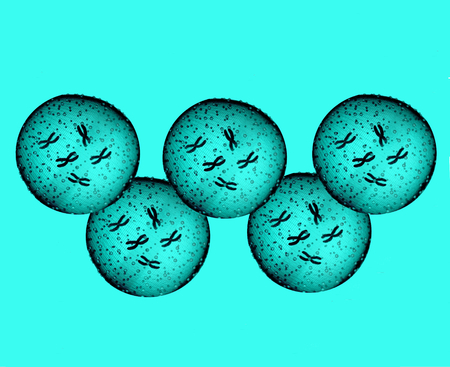 microcosmic: Olympians Light Blue Microbes