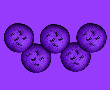 microbes: Olympians purple microbes Stock Photo