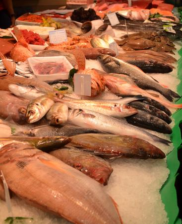 prepared shellfish: Fresh Fish at the market, displayed on ice