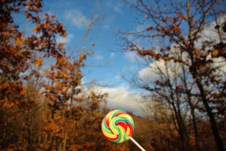 herbst: Lollipop