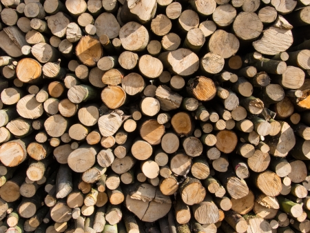 diameters: Pile of wood with logs of different diameters Stock Photo