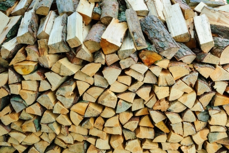 Drying splitted firewood in a stack photo