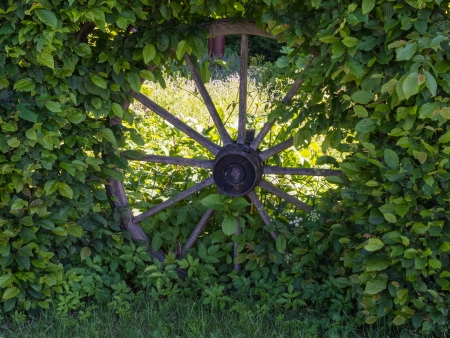 spoked: Old wooden spoked wheel as decoration in a hedge Stock Photo