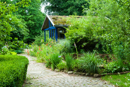 path cottage garden: Path and cottage in natural garden in summer