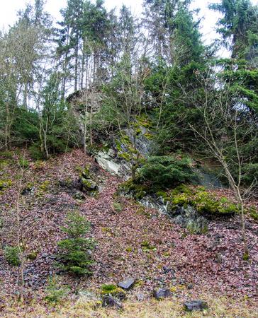 Cliff im Nebel im Steinbruch bei Bromberg, Medebach, Sauerland