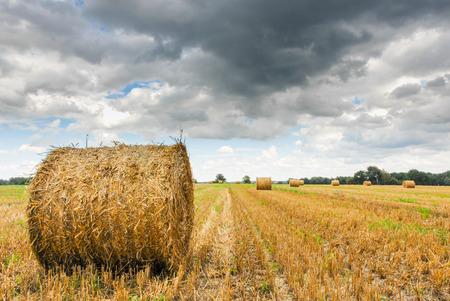 Stroh rollt auf einem Stoppelfeld unter Gewitterwolken