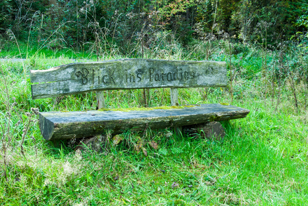 Holzbank im Paradies zwischen Bromberg und Bhlen Nähe von Medebach, Sauerland
