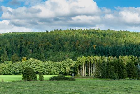 Mit Blick auf Hasenkammer und Berg Böhlen in der Nähe von Medebach, Sauerland Standard-Bild