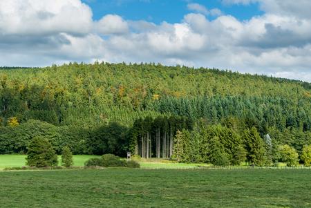 Mit Blick auf Hasenkammer und Berg Böhlen in der Nähe von Medebach, Sauerland Lizenzfreie Bilder