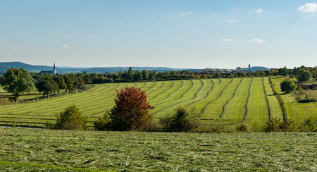 Meadows mit gemähtem Gras in der Nähe von Medebach im Hochsauerland, Deutschland