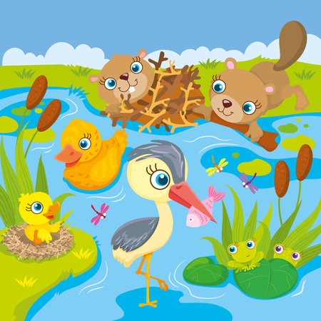 beavers: Vector illustration of the inhabitants of the pond and marshes - frogs, beavers, ducks and heron Illustration