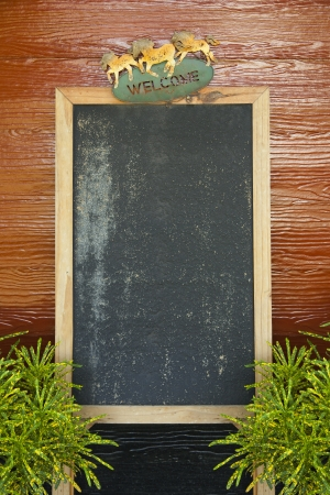 blank blackboard for writing your text photo