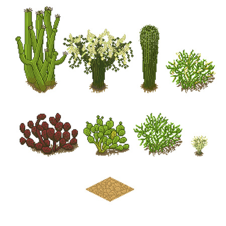 dry land: Vector game set in isometric pixel art style. Desert items for game background
