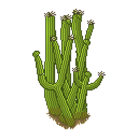 Vector cactus in pixel art style. Desert item for game background Vector