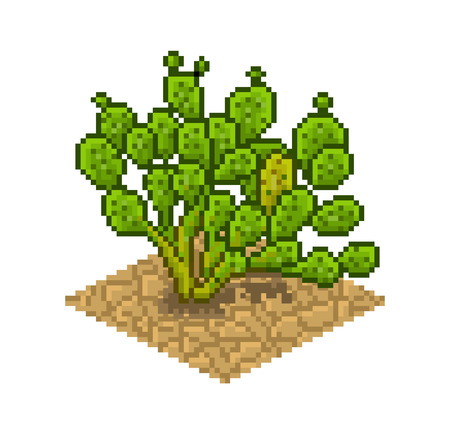 opuntia: Opuntia ficus indica. Vector isolated illustration in pixel art. Flora of the desert Illustration