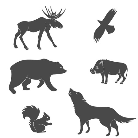 bear silhouette: Set of forest animals vector silhouettes. Bear, eagle, squirrel, wolf, pig, moose, deer Illustration