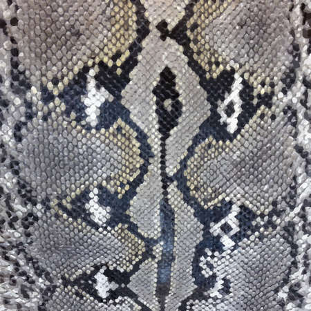 leather background: Snake skin python pattern textile texture. Reptile fabric natural animal design Illustration