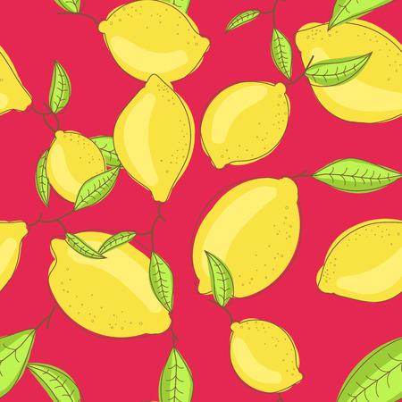 citrus tree: Frutos de lim�n verde con la hoja en la rama de fondo rojo brillante. Citrus modelo incons�til del vector. Tela de verano