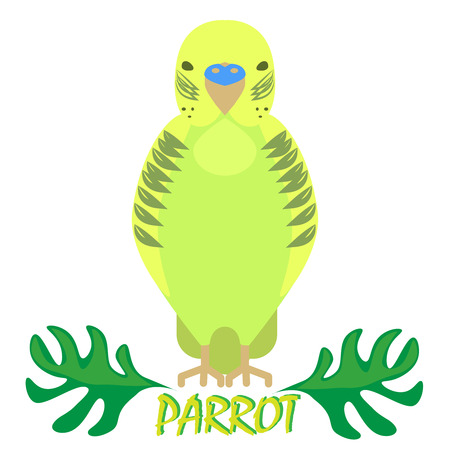 front view: Parrot isolated front view on white. Budgerigar green cartoon bird with jungle tropical leaves