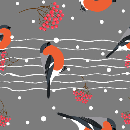 barbery: Bullfinch and berberry branch seamless pattern. Vector dark gray holiday snow winter background. Bird and forest berry print.