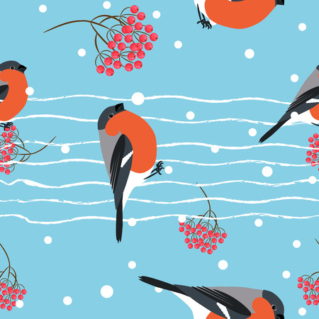 barbery: Bullfinch and berberry branch seamless pattern. Vector blue holiday snow winter background. Bird and forest berry print.