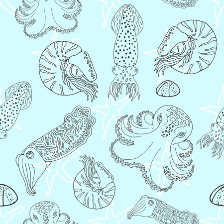 calmar: Hand drawn cephalopods seamless pattern. Blue background vector octopus, squid calmar, nautilus and cuttlefish.