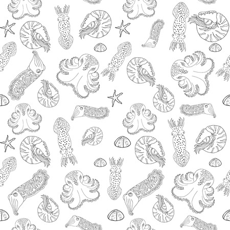 calmar: Hand drawn cephalopods seamless pattern. Black and white vector octopus, squid calmar, nautilus and cuttlefish