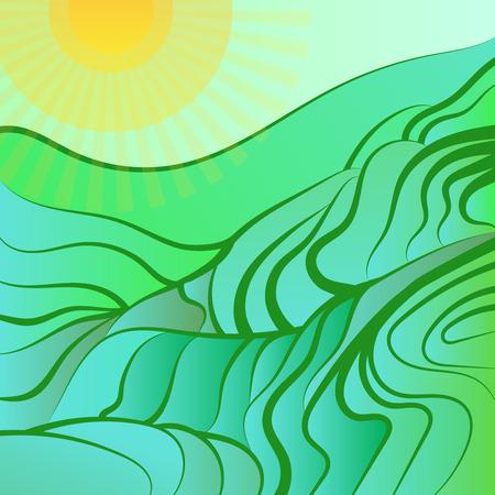 arable: Rice field illustration