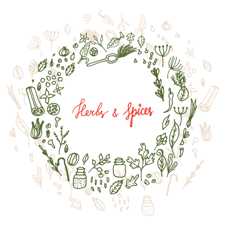 mustard seed: Herbs and spices doodle hand drawn laurel wreath. Pen sketch food circle frame. Illustration