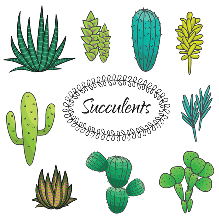 thorny: Succulents cacti plant vector set. Botanical green desert flora collection. Home garden cartoon cactuses.