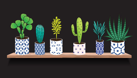 houseplants: Succulents and cactus plants in pots. Houseplants in blue ceramic pots on shelf decoration set. Interior gardening decor. Illustration