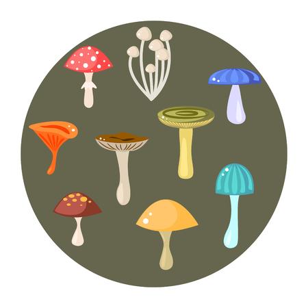 food poison: Mushrooms set, vector illustration. Cartoon mushrooms, fungus, amanita, russule, saffron milk cap and orange-cap boletus. Forest fungus.
