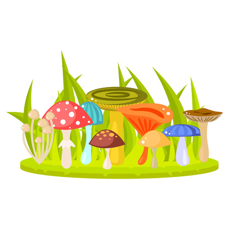 fleshy: Forest mushrooms on grass lawn vector. Cartoon mushrooms, fungus, amanita, russule and saffron milk cap. Forest fungus in grass. Illustration