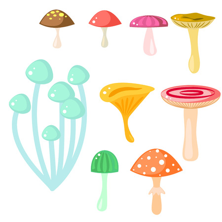 cooking ingredients: Isolated cartoon mushrooms vector on white. Fungus, amanita, russule and saffron milk cap clip art. Forest magic fungus, game asset.