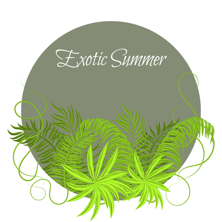 liana: Summer Tropical Green Plants in round circle frame. Exotic jungle palm leaves and branches for greeting card or invitation. Illustration