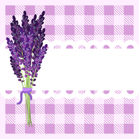 frill: Bunch of lavender flowers on frill white banner and violet plaid tartan backdrop. Rustic provence style.