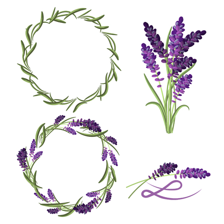 Provence lavender flower bouquet set. Violet lavender wreaths and laurels. L letter badge sign.