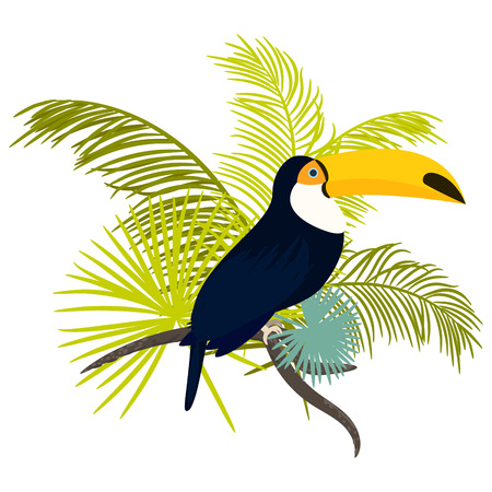 bird illustration: Toucan bird vector illustration for tshirt apparel design. Exotic bird sitting on branch with tropic palm leaves composition. Shirt vector design.