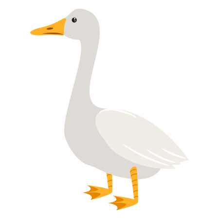 Cute cartoon goose isolated on white vector illustration. 矢量图像