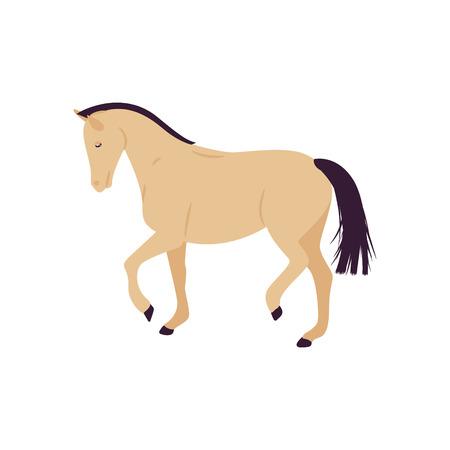 Cartoon horse vector illustration. Flat style pony. 向量圖像