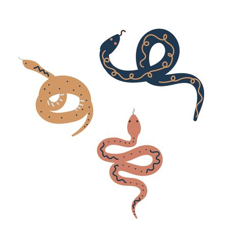 Snake scandi style vector set. Hand drawn reptiles design for cards and prints, earthy colors. Ilustração
