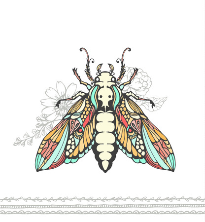 dead insect: Insect color illustration. Dead head Butterfly